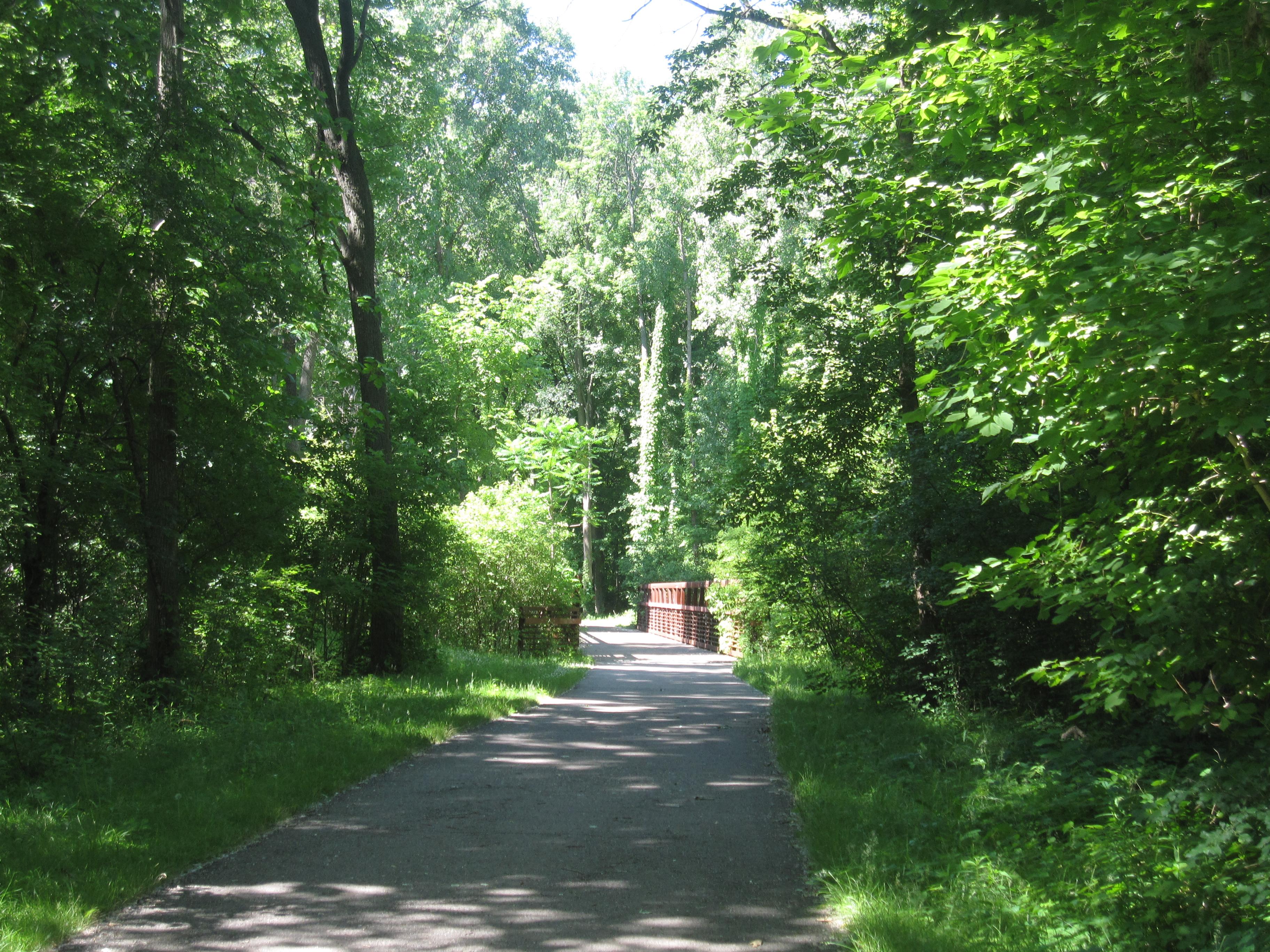 Rouge River Trail running toward Michigan Avenue